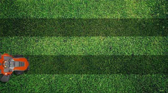 Striped Lawn Pattern