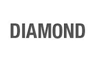 Diamond Snow Plow Parts