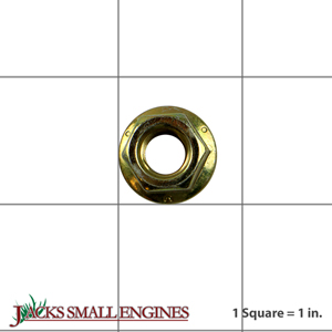 06500901 Flanged Lock Nut