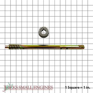 53212500 Shaft And Worm Gear Set