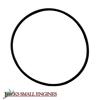 O-Ring 05614900