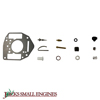 Carburetor Overhaul Kit 842877