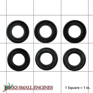 Briggs And Stratton Power Products 204084gs Water Seal Kit