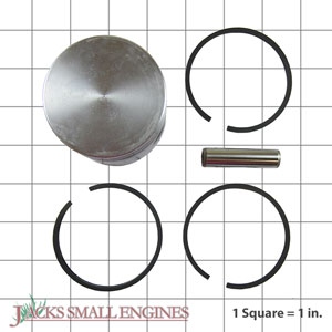 298906 Piston Kit 0.020 Oversized (No Longer Available)