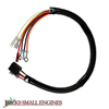 Wiring Harness 691996