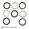 "2"" Power Cylinder Seal Kit 1305305"