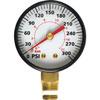 """1/4"""" NPT Pressure Gauge GR002000AJ"""