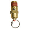 "1/4"" NPT Safety Valve Assembly GR002200AJ"