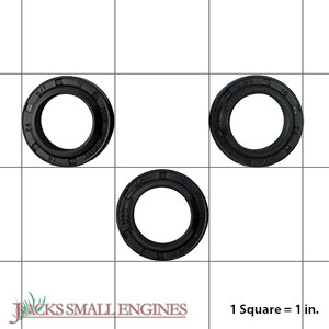 PM064000SV Giant Oil Seal Kit