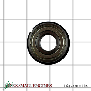 143921 Bearing w/ Snap Ring