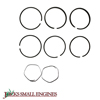 Pump Piston Ring Kit 6101020