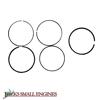 Standard Ring Set 13010Z5H004