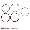Standard Ring Set   13010Z6L003