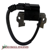 Ignition Coil Assembly 30500Z5T003