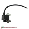 Ignition Coil Assembly