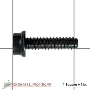 503217520 Screw