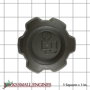 584248702 Cap Assembly
