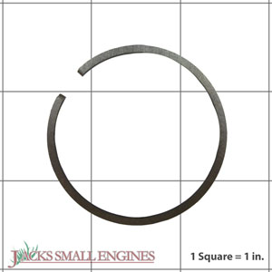 503289015 Piston Rings