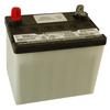 30 AMP Dry Battery
