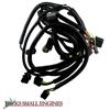 Wiring Harness 580798101