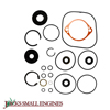 Seal Overhaul Kit 2510073