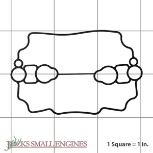 110607018 Float Chamber Gasket