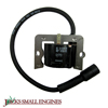 Ignition Module 1258404S
