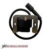 Ignition Module 1258417S