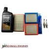 Kohler Maintenance Kit 1478901S