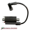 Ignition Coil 2451902S