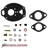 Carburetor Repair Kit 79024591V