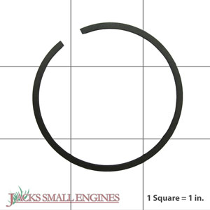 530036176 Piston Rings