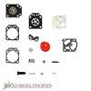 Carburetor Repair Kit 530069811