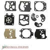 Diaphragm and Gasket Set JSE2672143