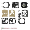 Diaphragm and Gasket Set JSE2672154