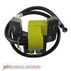 Ignition Coil JSE2673531