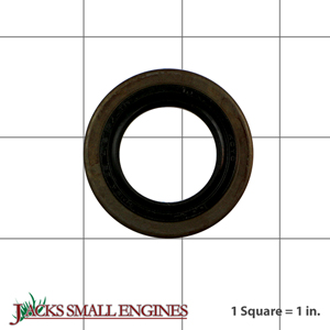 0440250160 Oil Seal