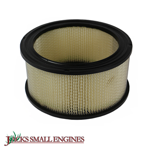 100065 Air Filter