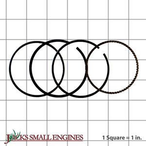 500229 Piston Rings
