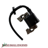 Ignition Coil 440121