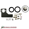 Carburetor Kit 520164