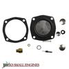 Carburetor Kit 520312