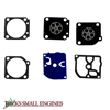 Gasket and Diaphragm Kit 615098