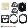 Gasket and Diaphragm Kit 615401