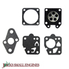Gasket and Diaphragm Kit 615831
