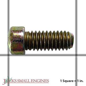 30196 Screw