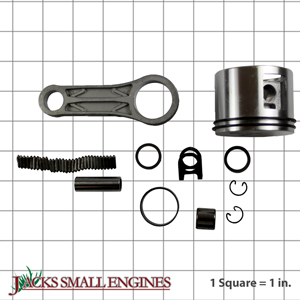 310291A Piston And Rod Assembly