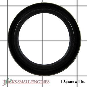 35319 Oil Seal