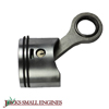 Piston And Rod Assembly 310293