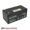 12 Volt Battery 1063995